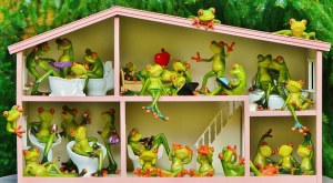 frogs-1382827__340